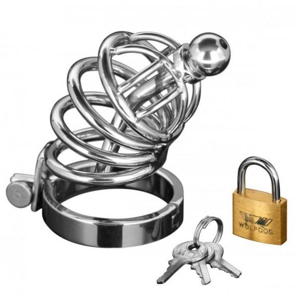 Asylum Locking 4 Ring Chastity Cock Cage